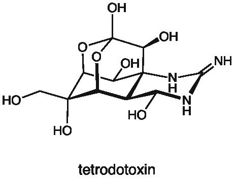 tetrodotoxin